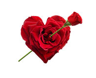 Heart shaped rose. With rose arrow Stock Images