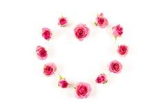 Heart shaped rose flower on white background Stock Photo