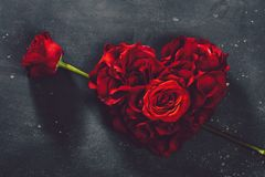 Heart-shaped roses and rose flower stock images