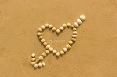 Heart shaped shells Stock Photos