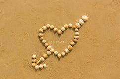 Heart shaped shells Stock Photos