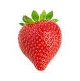 Heart-shaped strawberry. Stock Photos