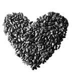 Heart shaped sunflower seeds. Heart shaped tasty sunflower seeds on the white background Stock Photo