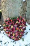 Heart shaped symathy flowers Stock Photos