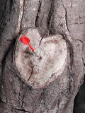 Heart shaped tree branch cutoff in black and white with a red dart Stock Images