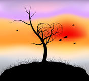 Heart shaped tree,nightfall scene Stock Photo
