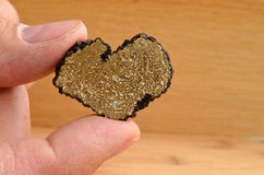 Heart shaped truffle in hand Stock Images
