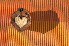 Heart-shaped walnut Royalty Free Stock Photography