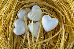 5 heart shaped white hearts in a bird nest. Group of 5 heart shaped white hearts in a bird nest Royalty Free Stock Photography