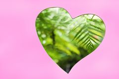 Heart shaped window in pink wall with blurred green plant and tree in garden , nature patterns for background royalty free stock photo