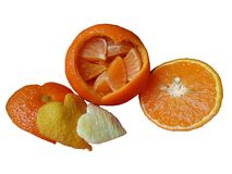 Heart shapes from citrus fruit. Peel, tangerine holding chopped pieces of pulp and a tangerine cut into half stock image