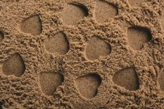 Heart shapes made on the sand background. In view stock images