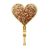 Heart with shelled sunflower seeds. Heart shape made of golden zip, filled with shelled sunflower seeds texture stock photography
