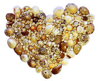 Heart of Shells Stock Images