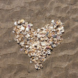 Heart of shells royalty free stock images