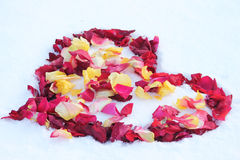 Heart on the snow. Dotted with  rose petals Royalty Free Stock Images