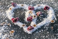 Heart of snow with roses Royalty Free Stock Images