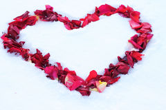 Heart on the snow. Strewn with rose petals along the contour Royalty Free Stock Photos