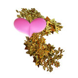 Heart Spangle Stock Images