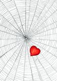 Heart in spider web Royalty Free Stock Photo