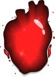 Heart splash. Human heart concept. Red liquid splash heart shape Stock Photos