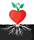 Heart sprout Stock Photo