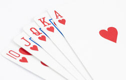 Heart straight flush playing card. Close up shot of heart straight flush playing card Stock Images