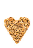 Heart of sunflower seeds Stock Image