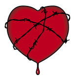 Heart surrounded b barbed wire. Bleeding heart surrounded by barbed wire Vector Illustration