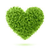 Heart symbol in green leaves Royalty Free Stock Photography