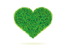 Heart symbol in green leaves Royalty Free Stock Photos