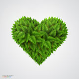 Heart symbol in green leaves. Stock Image