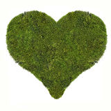 Heart symbol from green moss isolated on white Stock Images