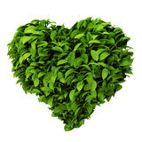 Heart symbol made of leafs Royalty Free Stock Image