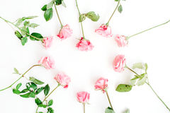 Heart symbol made of pink roses on white background Royalty Free Stock Images