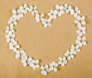 Heart symbol made of white spring flowers on brown paper background. Flat lay. Top view stock photography