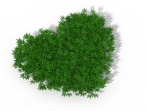 Heart symbol with marijuana weeds. Stock Images