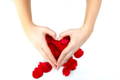 Heart symbol and red petals Royalty Free Stock Images