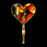 Heart with tangerines texture Royalty Free Stock Photo