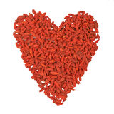 Heart of Tibetan barberry, red berry Goji Stock Image