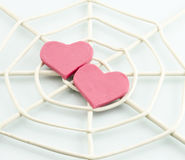 Heart trapped in a spider web. Stock Photos