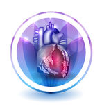 Heart treatment sign. Round shape colorful overlay flower petals at the background Royalty Free Stock Photos