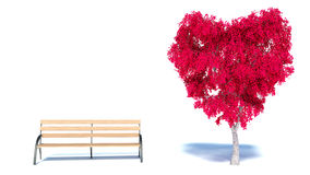 Heart Tree and bench Royalty Free Stock Image