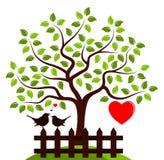 Heart tree and love birds Stock Photography