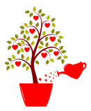 Heart tree in pot Stock Images