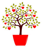 Heart tree in pot Royalty Free Stock Photos