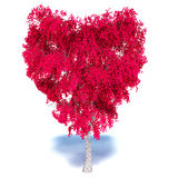 Heart Tree on white background Stock Photo