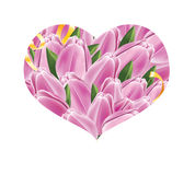 Heart tulip Stock Photo