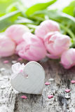 Heart and tulips Royalty Free Stock Image
