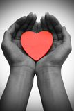 Heart in two hands Royalty Free Stock Image
